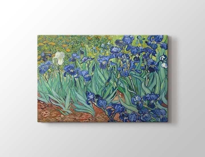 Vincent van Gogh - Irises Tablo |50 X 70 cm|